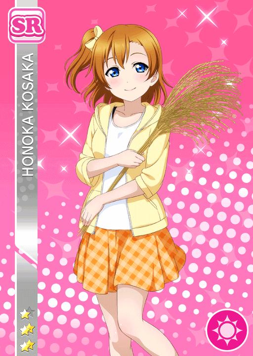 #1009 Kousaka Honoka SR
