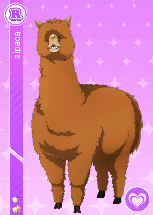 #382 Alpaca R idolized