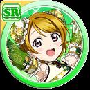 #396 Koizumi Hanayo SR