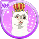 #629 Alpaca SR